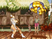 Street Fighters Game