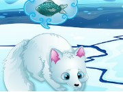 Arctic Foxes Game