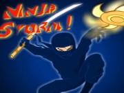 ninja storm
