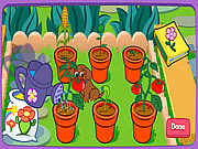Doras Magical Garden Game