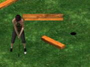 Putt It In The Garden Park Game