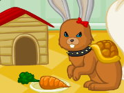 Pet Creator Game