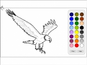 Eagle coloring Game