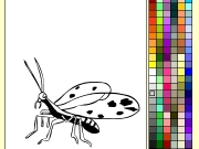 Bug coloring Game