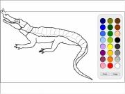 colorazione aligator