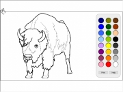 Bison coloring Game