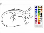 Lizard coloring Game