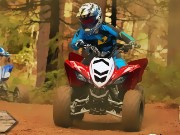 Forest ATV Challenge Game