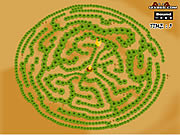 Maze Game Game Play 1 Find The Chicken Game