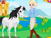 queen Elsa and Her Horse Game
