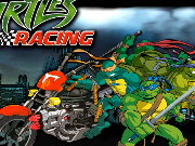 Turtles Racing Game