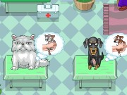 Super Veterinarian Game