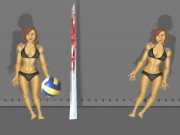 Ragdoll Volleyball Game