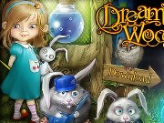 Dream Woods Game