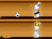 Rabbit Race Game