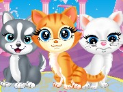 Pets Beauty Salon Game