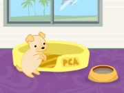 Puppy Academy Game