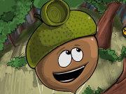 medico acorn