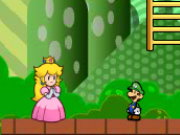 Mario Partner Adventure Game