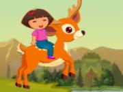 Dora va a fare un pic nic