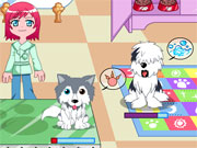 Puppy Center Caring Game